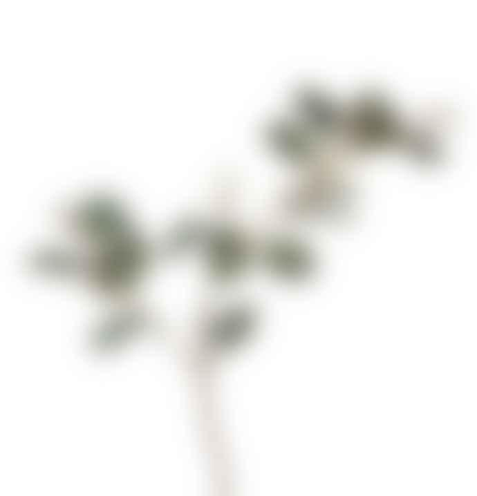 Parlane Green Berried Spray Eucalyptus Faux Foliage Decor