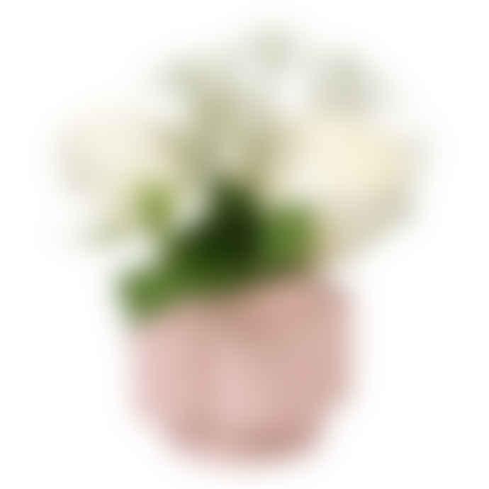 Orla Kiely Spot Flower Pink Stem Vase