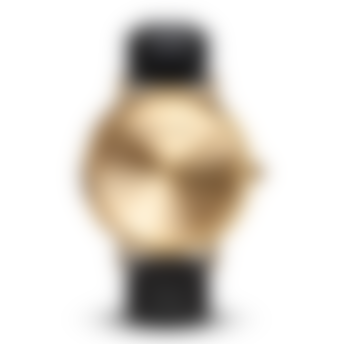 Larsen & Eriksen Gold Black 37 mm Absalon Watch