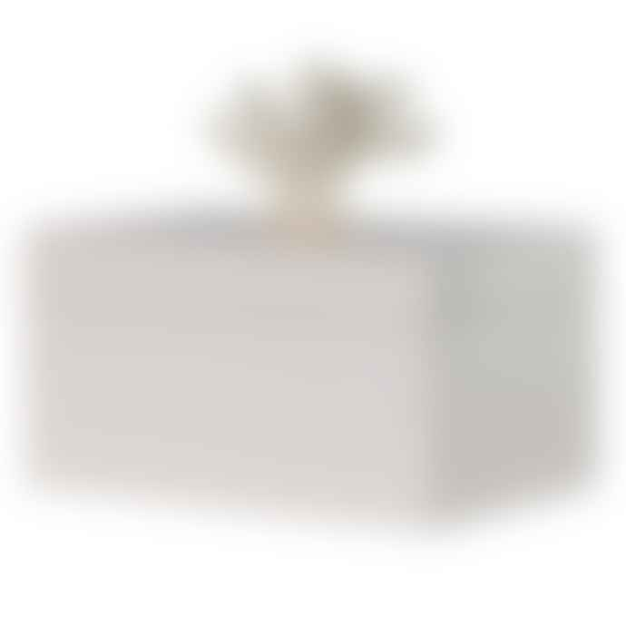 Marram Trading  Cream Coral Top  Box