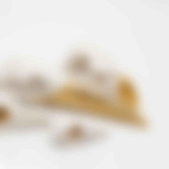 Alison Coaten Ceramic & Gold Lustre Gannet Skull