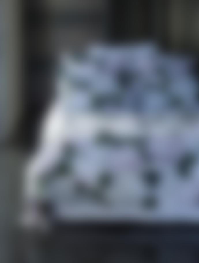 Wallace Cotton Hydrangea Super King Size Floral Duvet Cover Set