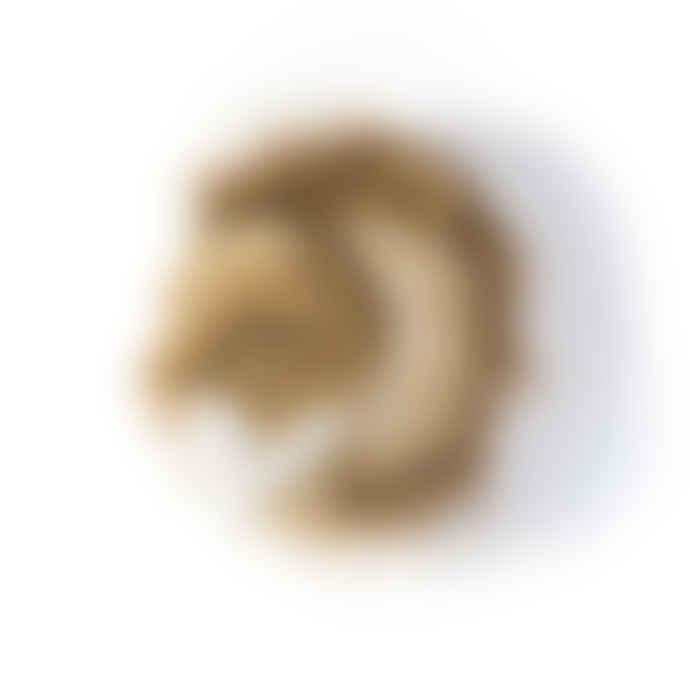WILD & SOFT Ceasar The Lion Plush Head