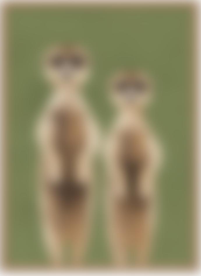Dieter Braun Brown Meerkats Poster