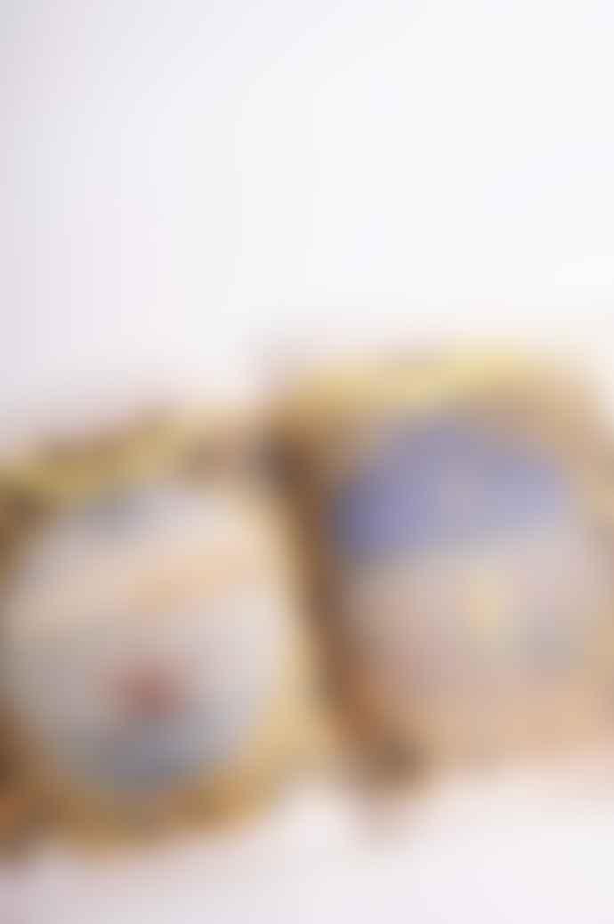 The Hambledon Website John Derian Picture Book