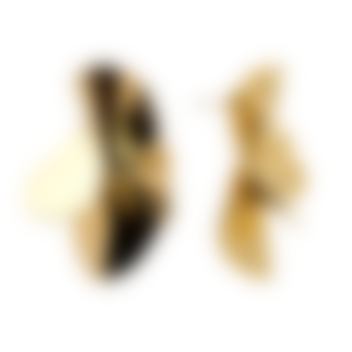 P D PAOLA Nomad Gold Statement Earrings