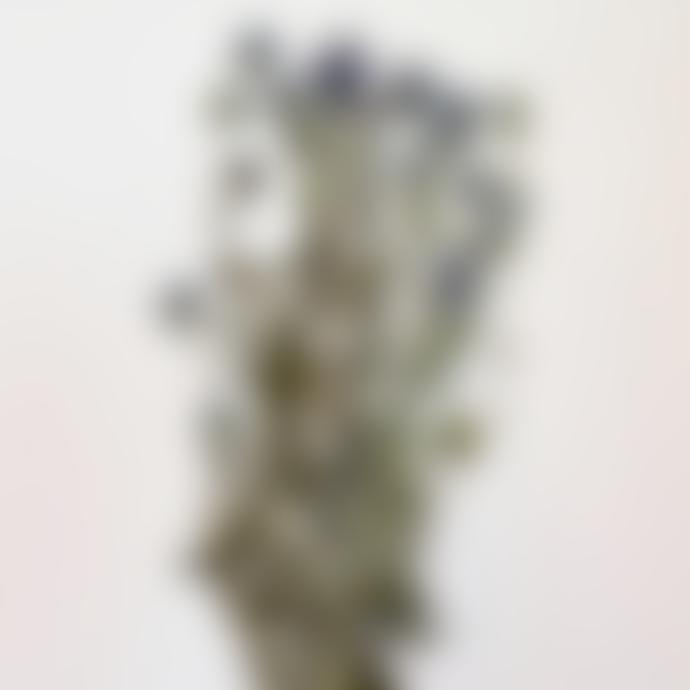 Little Deer Blue Natural Dried Globe Echinops Thistle Flowers