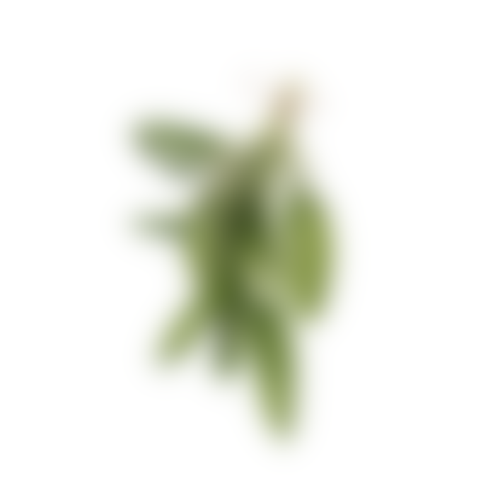 Haeckels Seaweed De Stress Bath Salts