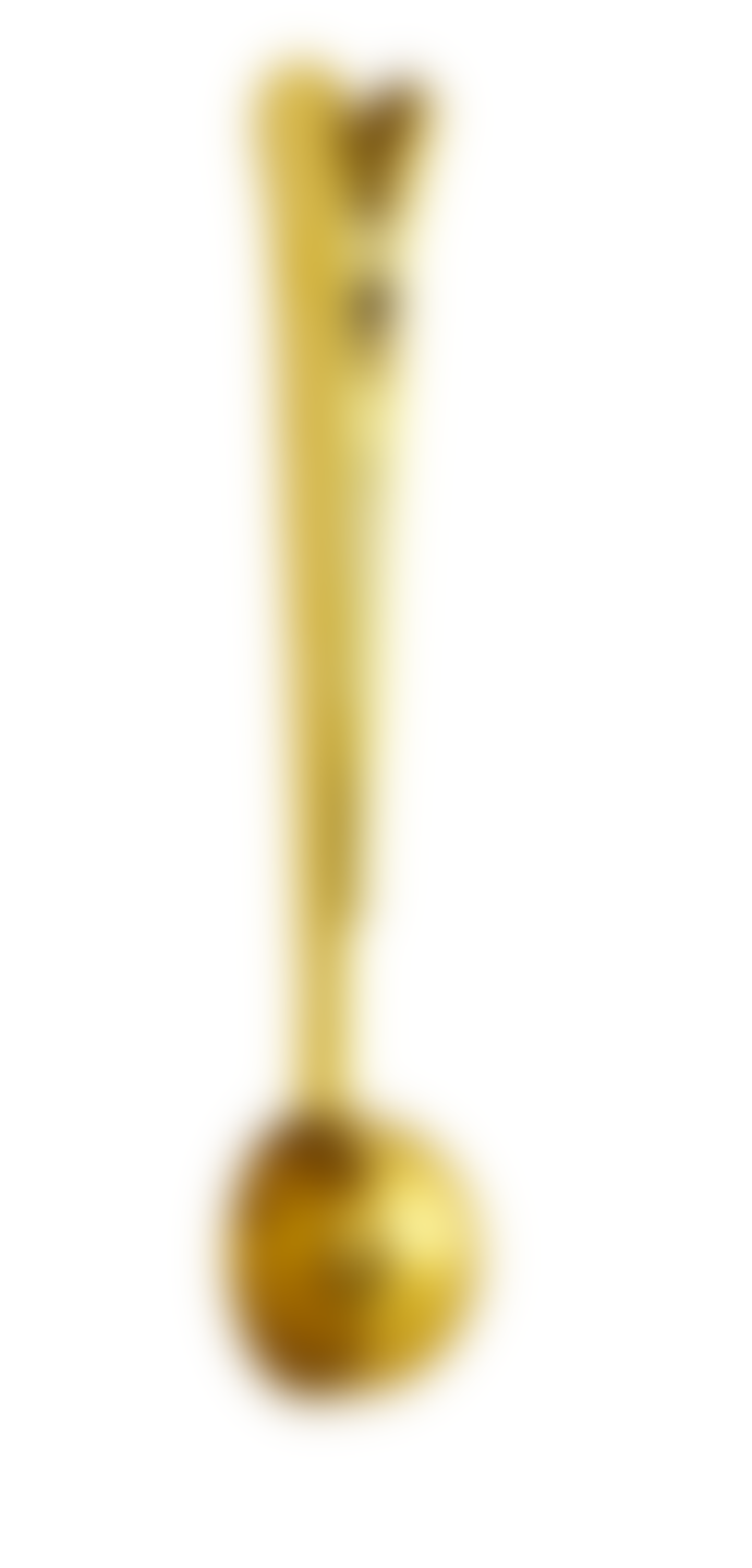 Nicolas Vahé  Gold Plated Coffe Spoon With Clip