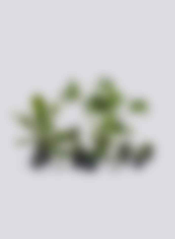 HAY X X Large Flowerpot