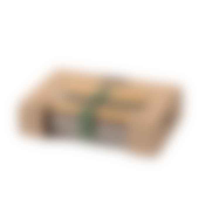 Black + Blum Olive Stainless Steel Sandwich Box