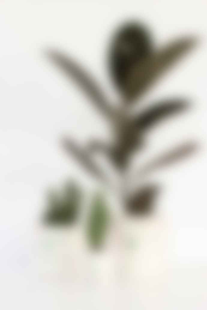 salt studio Pink and Green Terrazzo Planter 10cm