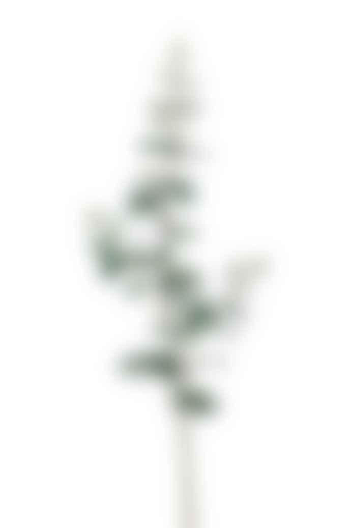 Pad Lifestyle Eucalyptus Spray Plant