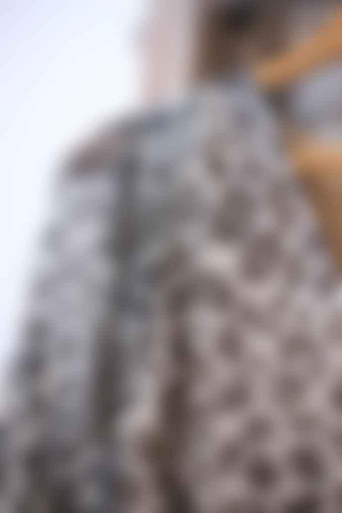 Swildens Van Leopard Print Dress