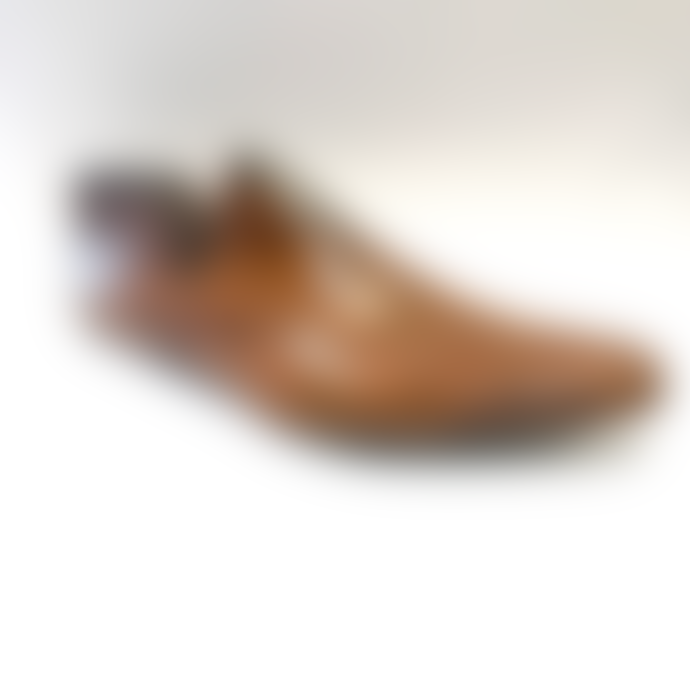 Tusk Collection Vintage Shoe Last Reclaimed