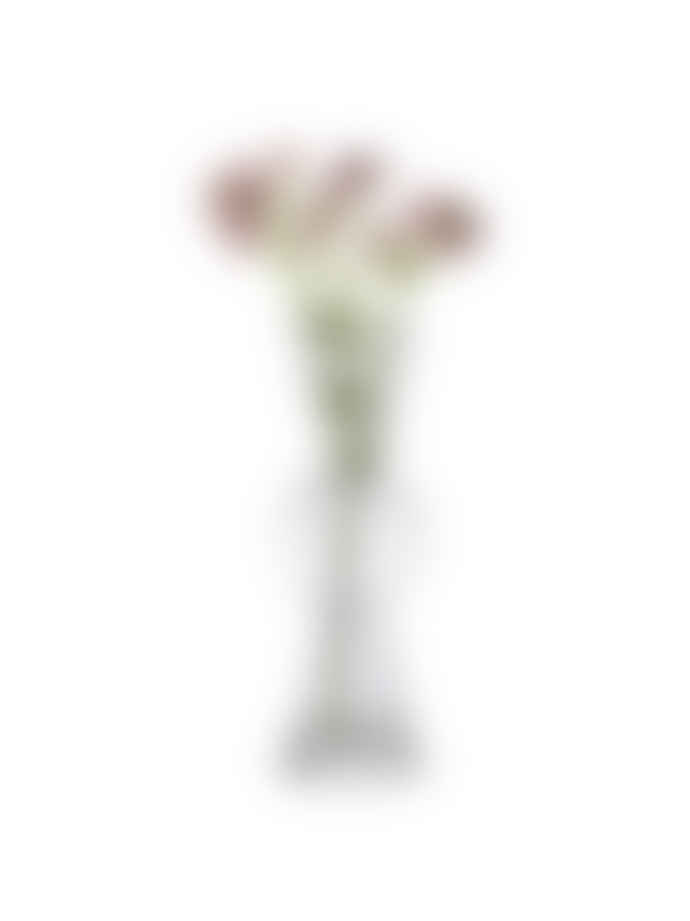 Design House Stockholm  Bon Bon Shaped Glass Small Flower Vase - 3 Colours