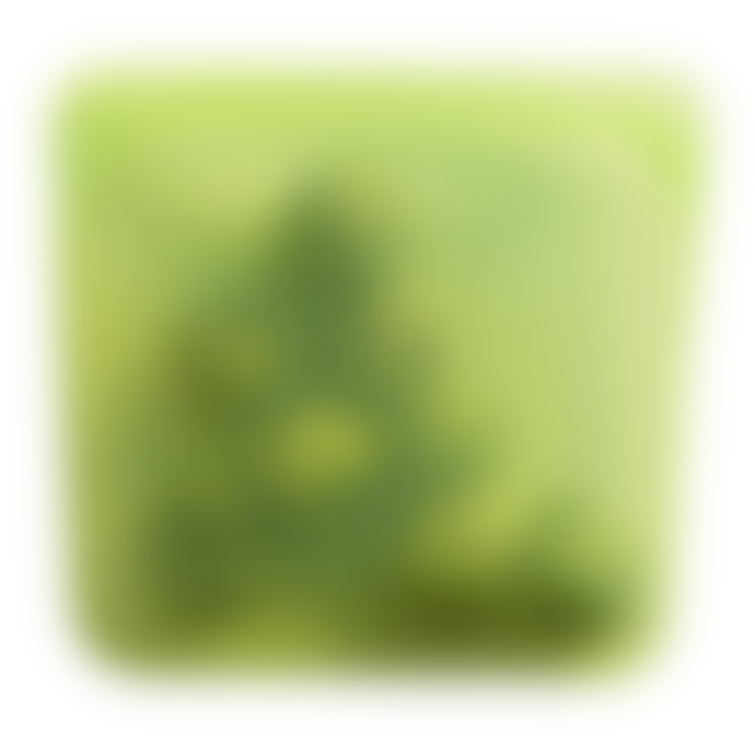 Stasher Medium Lime Reusable Silicone Sandwich Bag