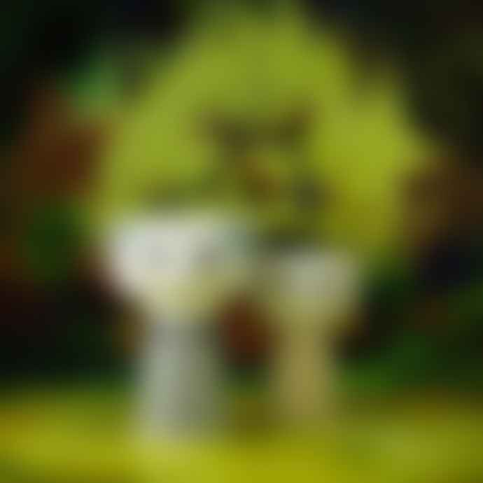 Rosendahl Bjørn Wiinblad Yellow Eva Vase