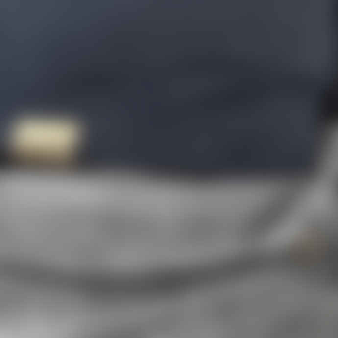Liger Dark Heather Grey Collectors Item Long Sleeve  T Shirt