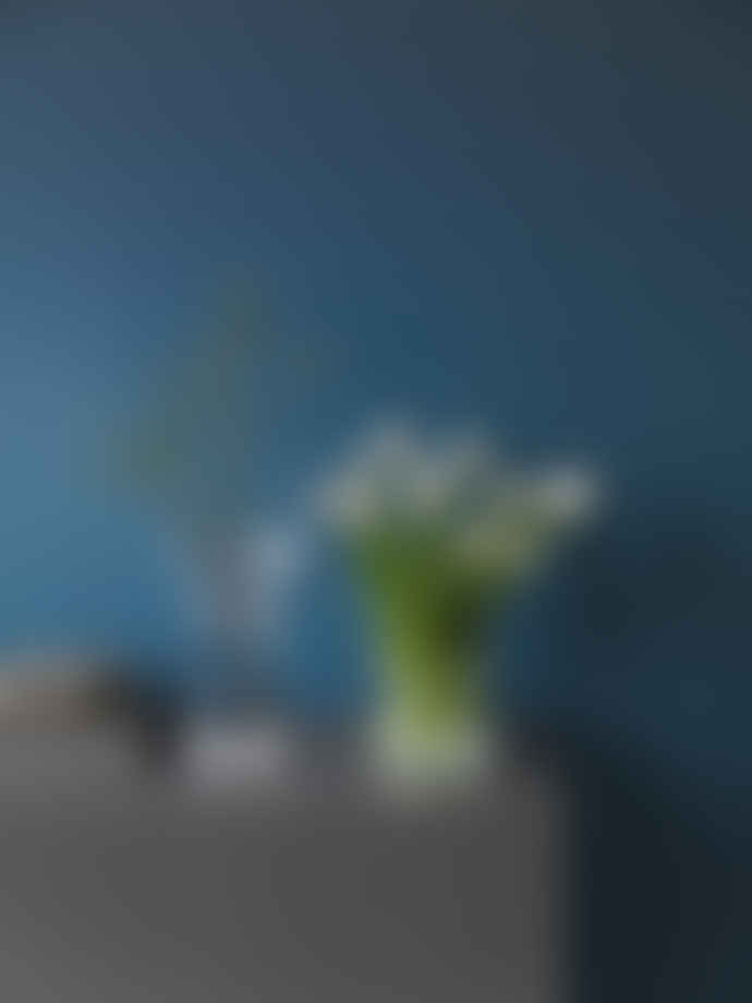 Kosta Boda  Grey Limelight Tulip Vase
