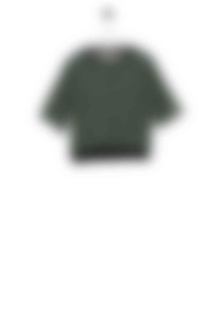 Bric-a-brac Appaloosa t-shirt  brown green floral print