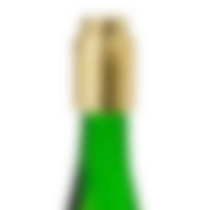 Stelton Collar Vacuum Bottle Stopper