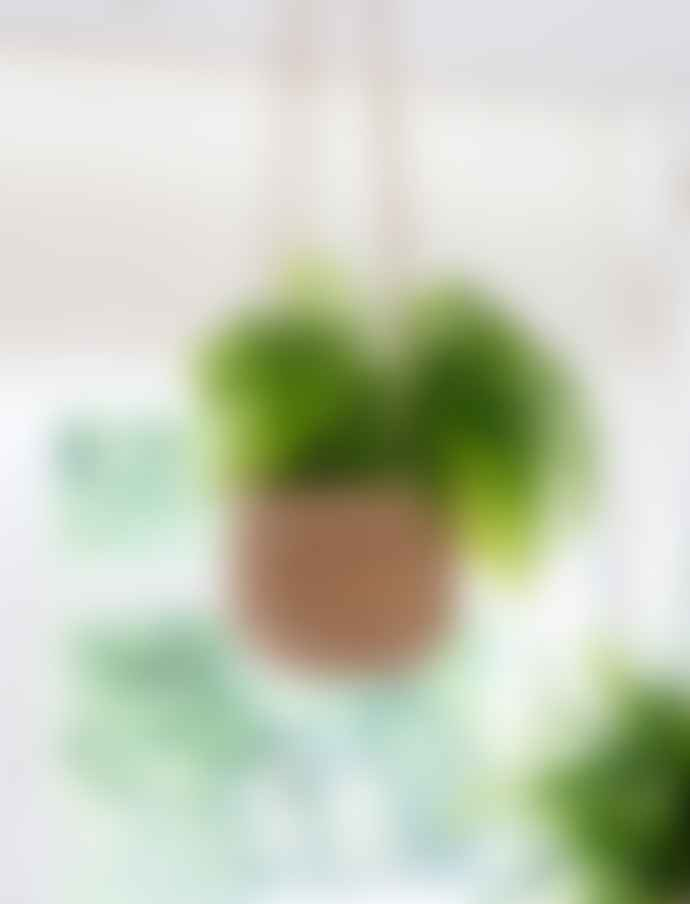 Garden Trading Hanging Plant Pot