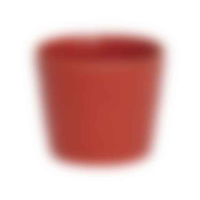 Amabro ERI Cup