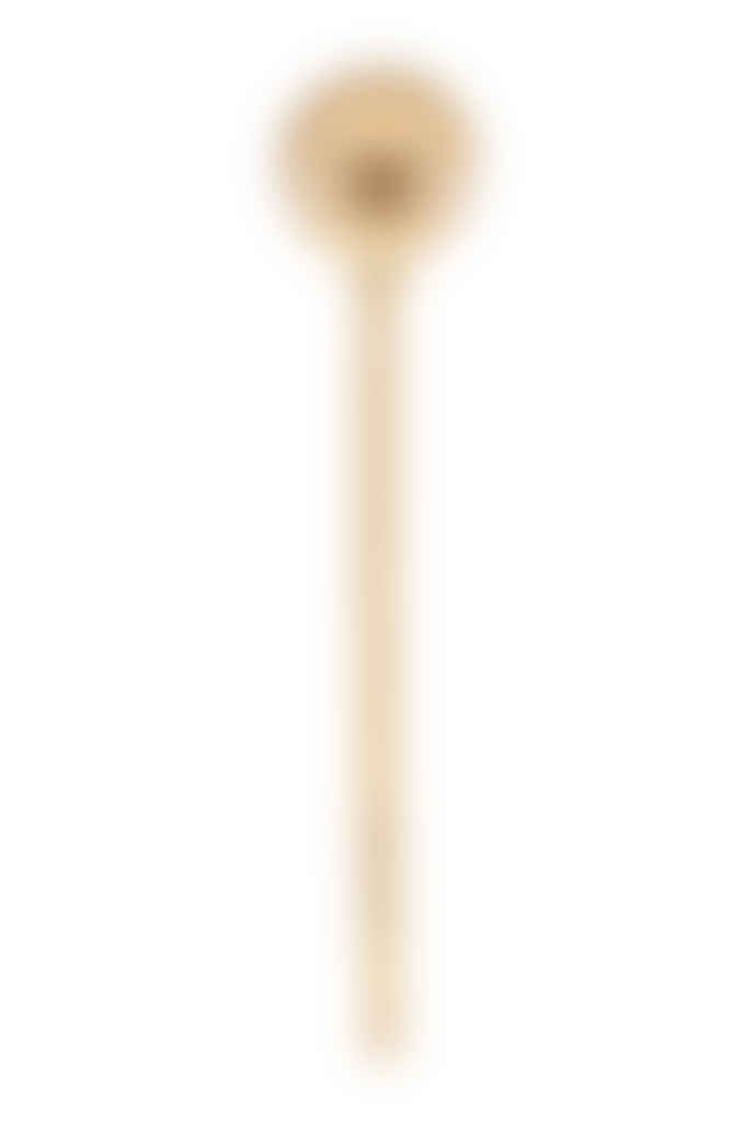 Nicolas Vahé  Brass Spoon