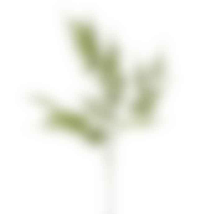 Hyde And Seek Flocked Asparagus Spray Decor