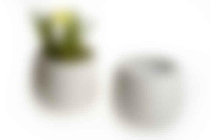 Garden Trading White crackle glaze flower pot
