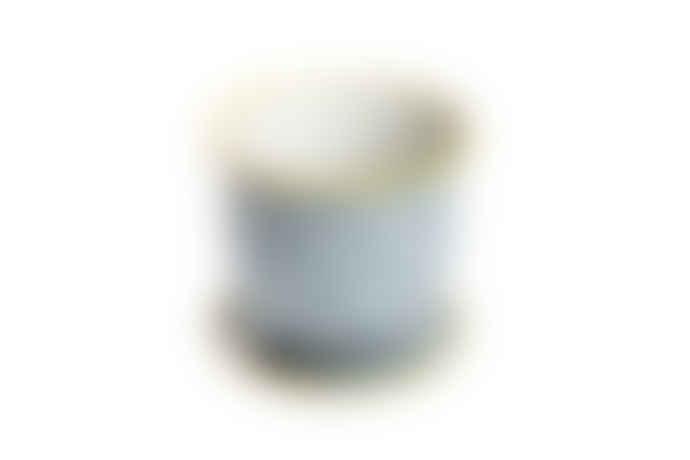 Chive Blue print flower pot
