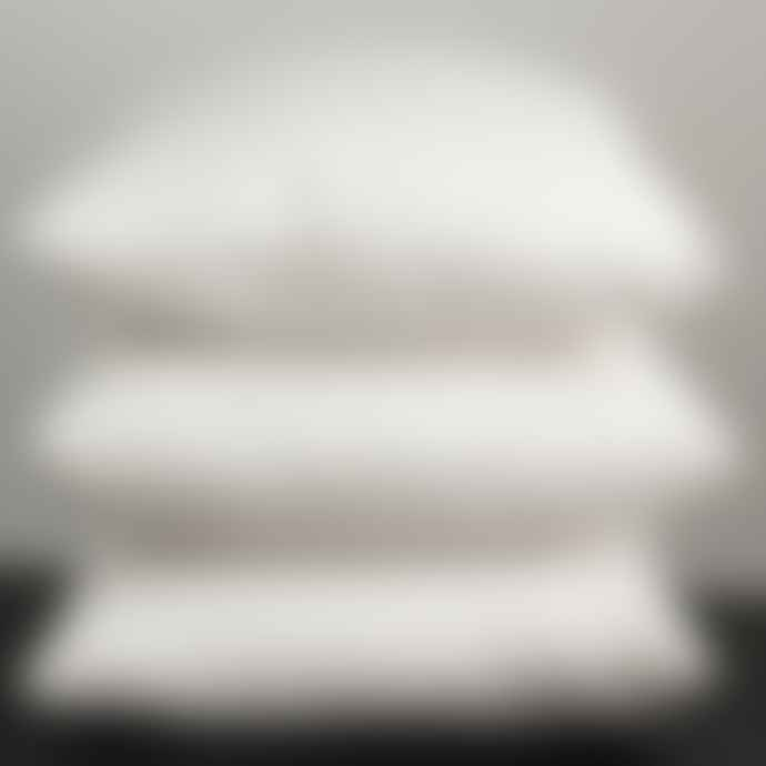 Afro Art 50x70cm Inner Cushion