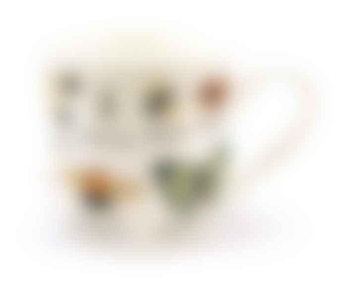 Gift Republic Insect Bone China Mug