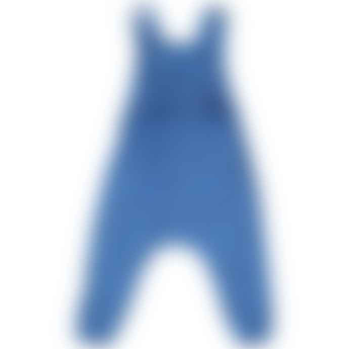 Picnik Blue Hands Print Overall
