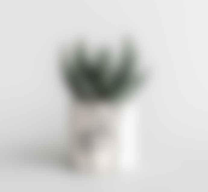 Louise Madzia Ceramics Peace White Earthenware Screen Printed Mini Pot