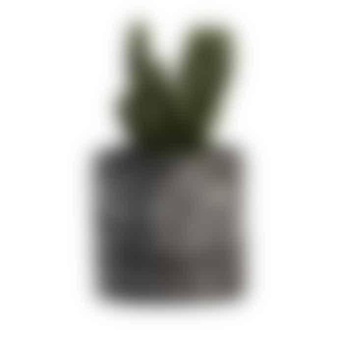 Salt Studios Terrazo Plant Pot