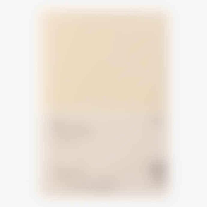 Midori A 5 Paper Cover Md Notebook