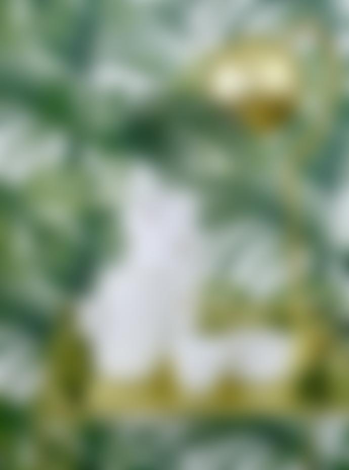 Bloomingville White Porcelain Deco Cactus
