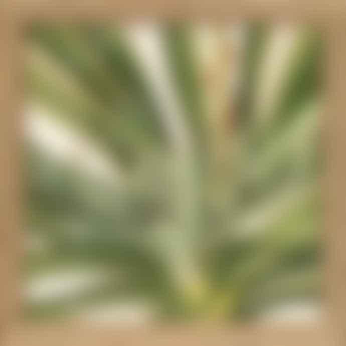 The Dybdahl Co. Oak Frame Midoru Plants Print