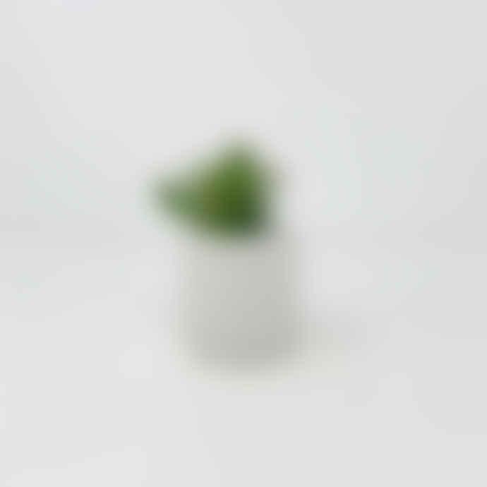 Conpot White Small Concrete & Marble Pot