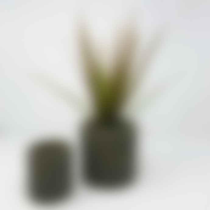 Conpot Green Medium Granite & Concrete Pot