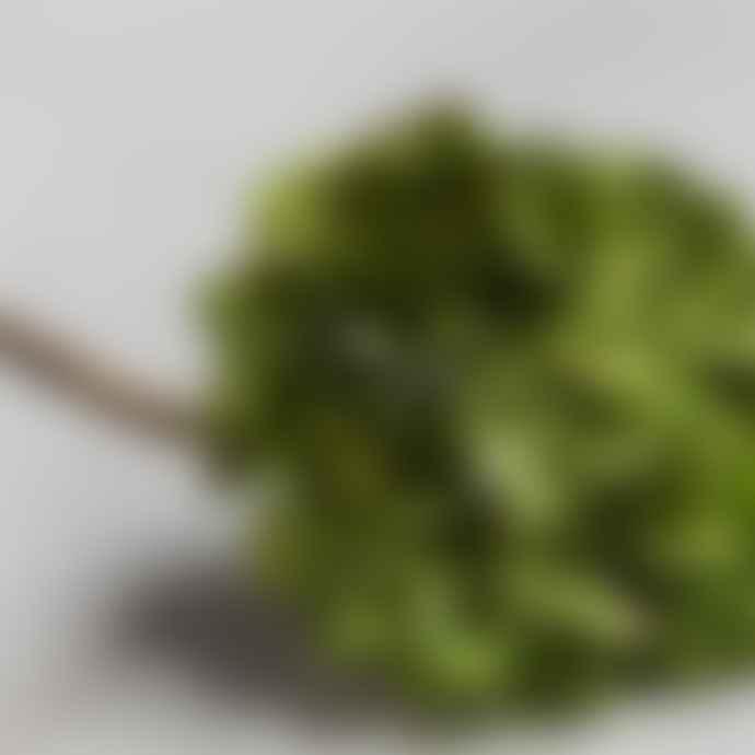 Abigail Ahern Hydrangea Green Realistic Faux Flower Stem