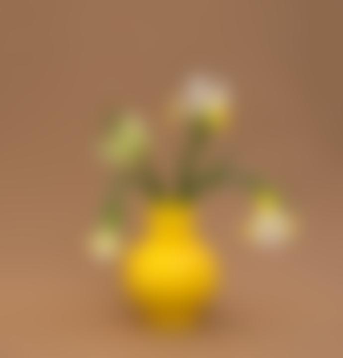 raawii Large Yellow Strom Vase