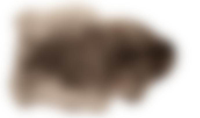 Van Buren Bolsward 105 cm Grey Icelandic Organic Sheepskin