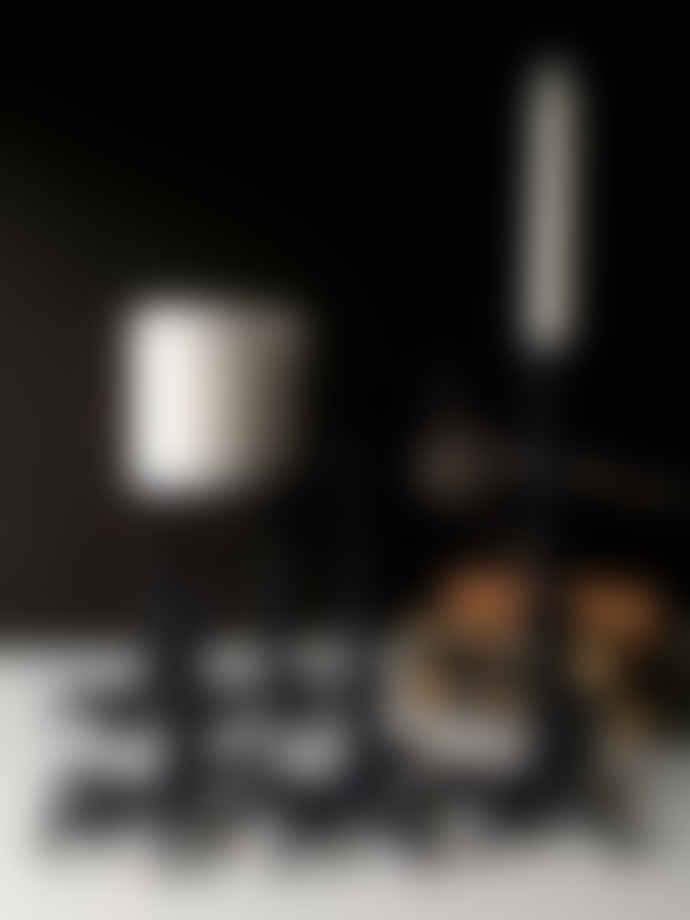 Vanilla Fly XL Black Aluminium Bird Candlestick