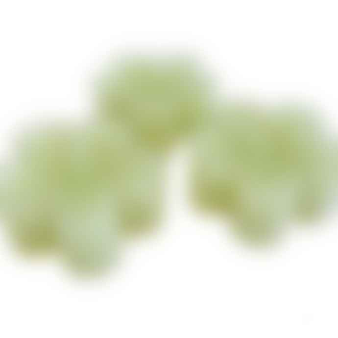 Box of 12 Lime Green Flower Shaped Tealight Candles