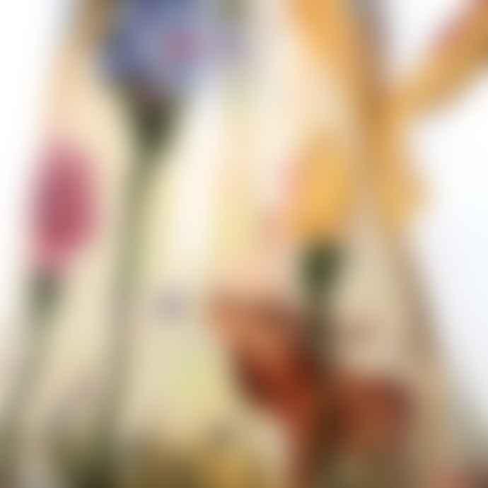Vanessa Conyers Large Secret Garden Ewer