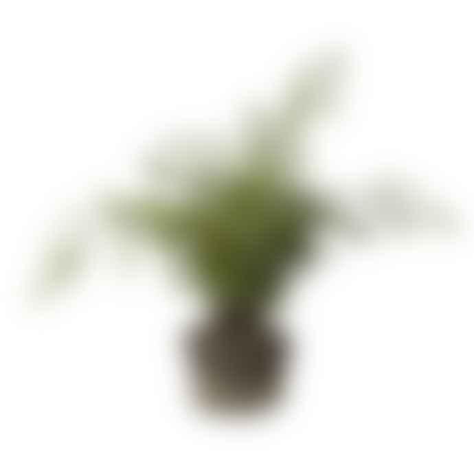 Lene Bjerre Artificial Green Flora Fern