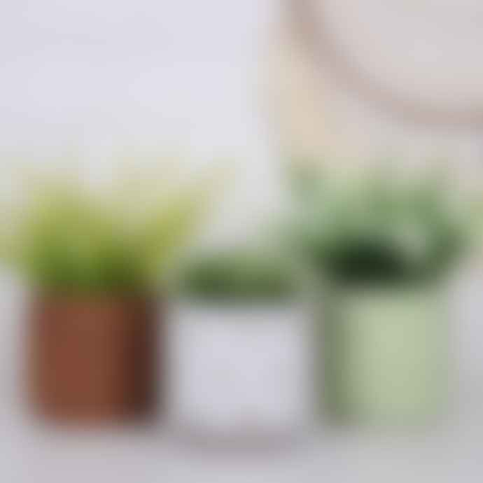 Hyde And Seek Lime Green Patterned Plant Pot